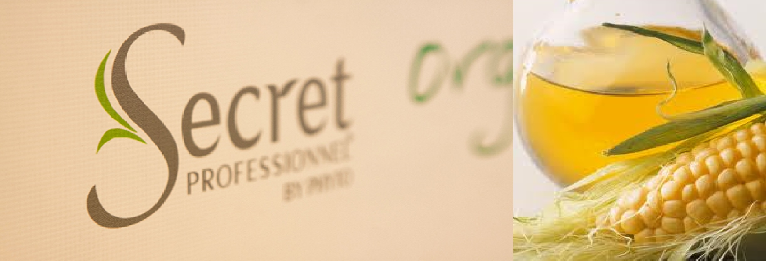 Secret Professionel by Phyto